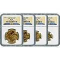 Certified Gold Eagle Sets